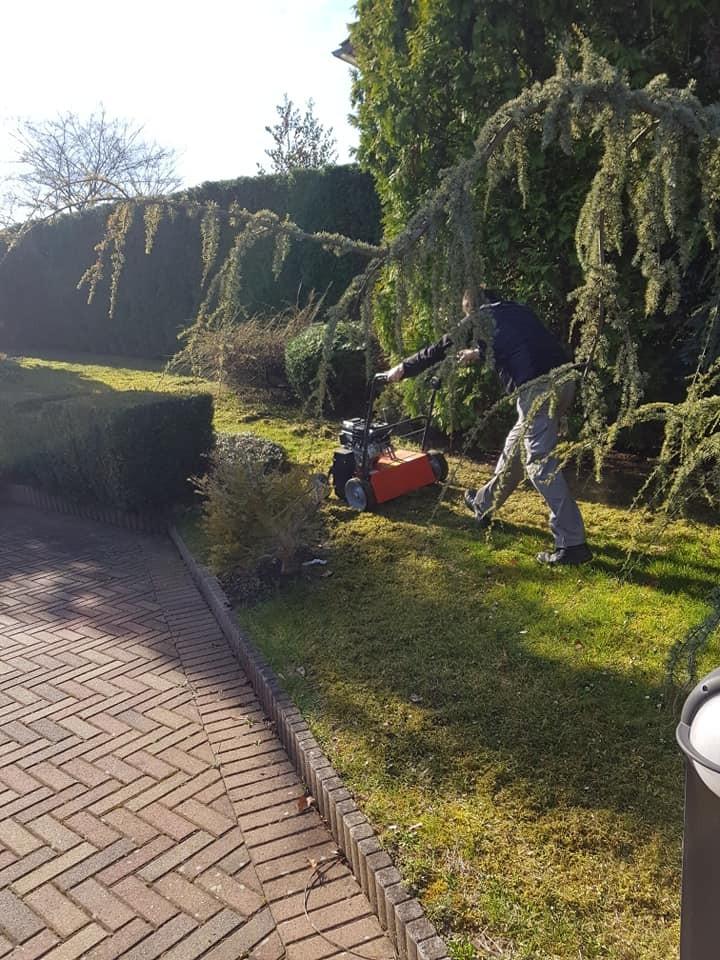 Šišanje žive ograde i fitosanitetska zaštita