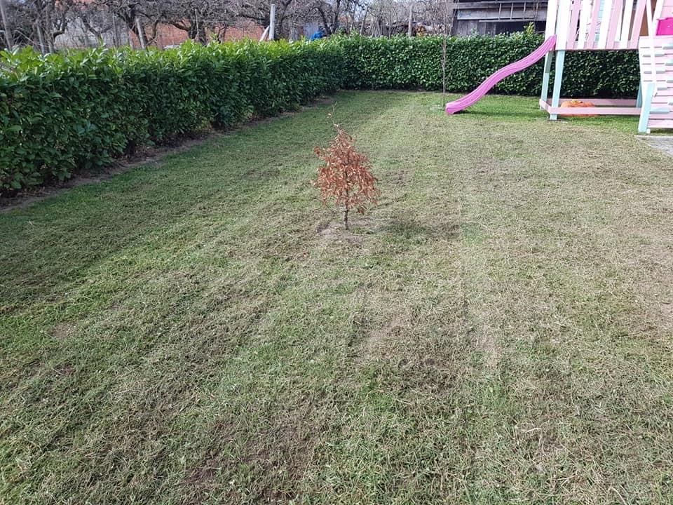 Prozračivanje i proljetna prihrana travnjaka