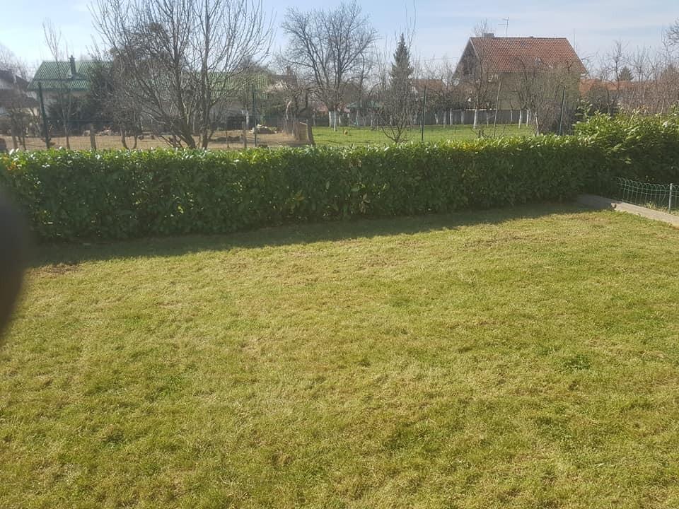 Košnja travnjaka, strojno prozračivanje, proljetna prihrana dušičnim gnojivom