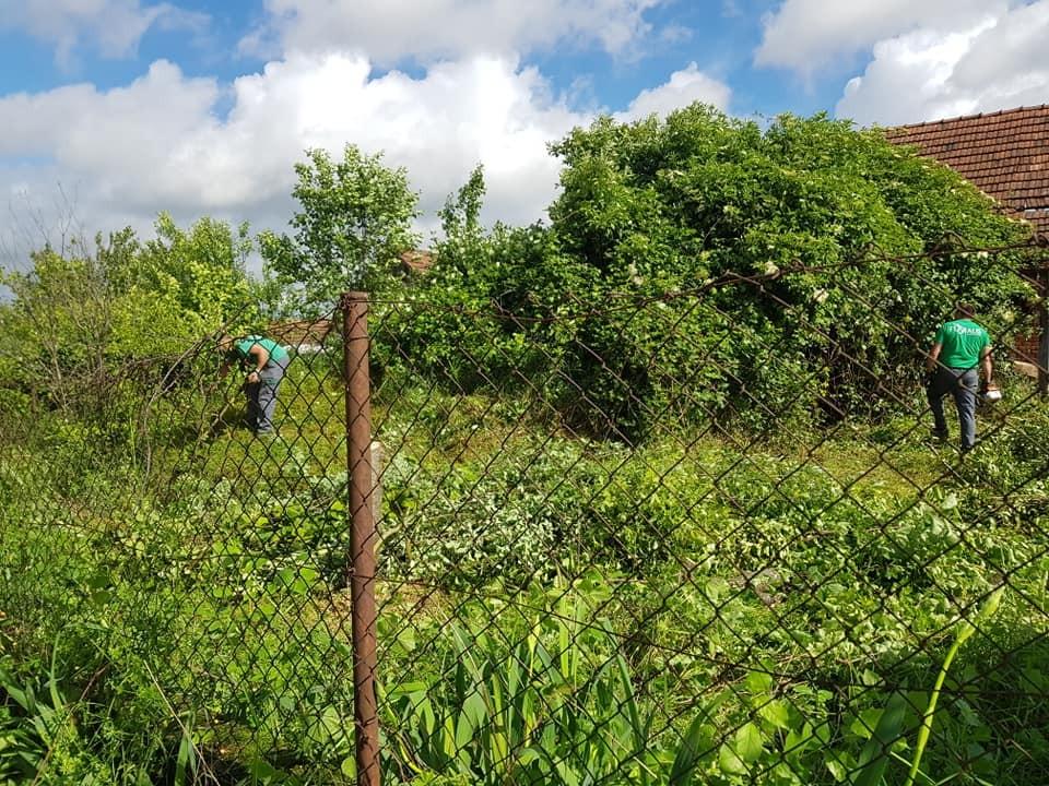 Krčenje i čišćenje zapuštenih parcela