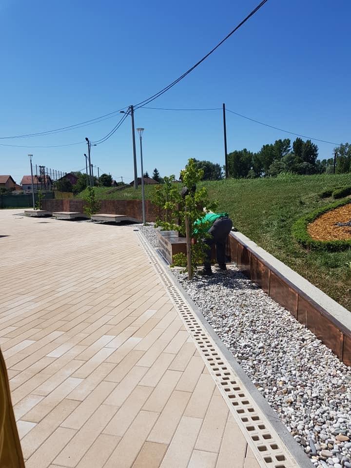 Održavanje hortikulturnih projekata