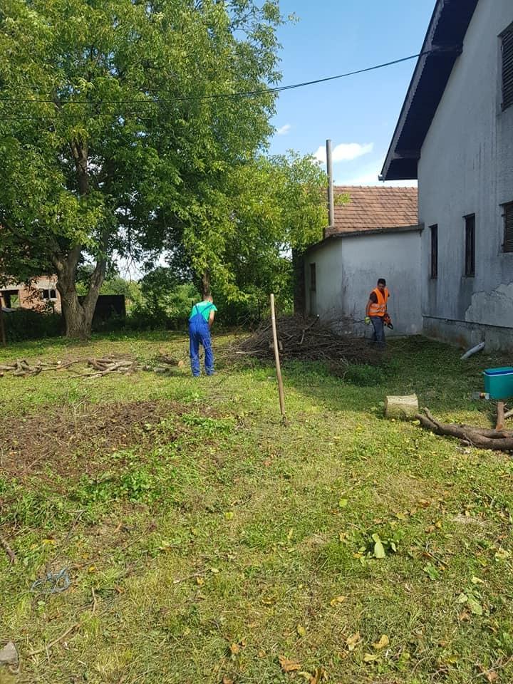 Krčenje i čišćenje zaraslih površina
