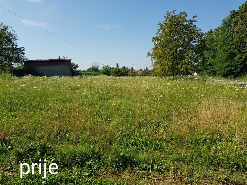 Čišćenje i malčiranje zapuštenih parcela