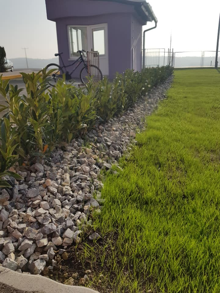 Radovi sadnje biljaka i sjetve travnjaka