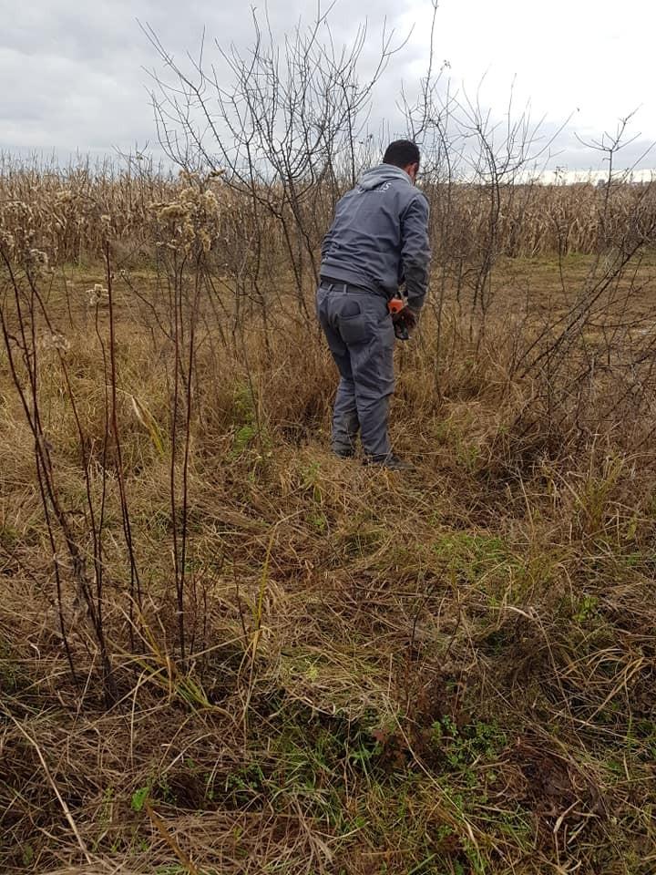 Čišćenje parcele i priprema za oranicu