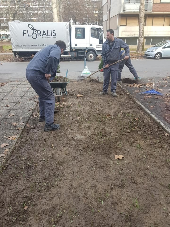 Uklanjanje starog travnjaka, postava novog gotovog travnog tepiha