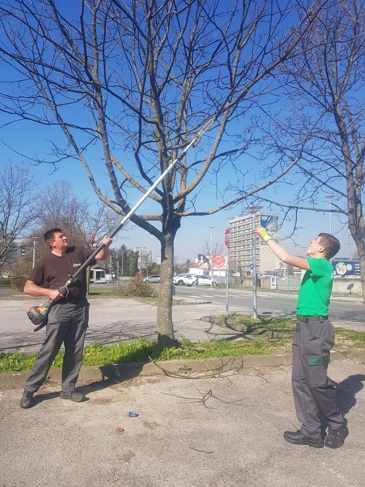 Prihrana travnjaka, orezivanje stabala, čišćenje zapuštenog dijela zemljišta