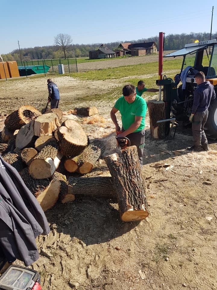 Izrada drveta prethodno uklonjenih stabala, te ospkrbljivanje ugroženih mještana okolnih naselja