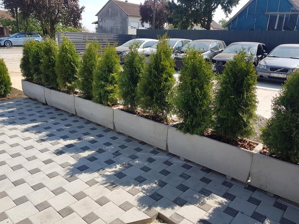 Sjetva travnjaka i sadnja žive ograde, uređenje žardinjera
