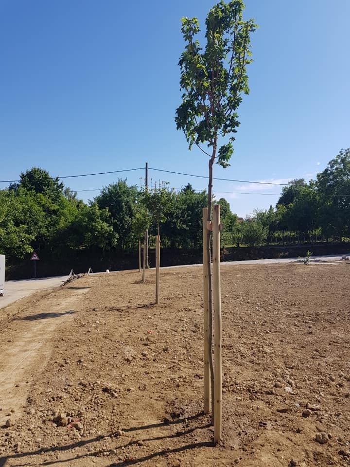 Sadnja stabala, grmova i uređenje novog vatrogasnog doma u Štefanju