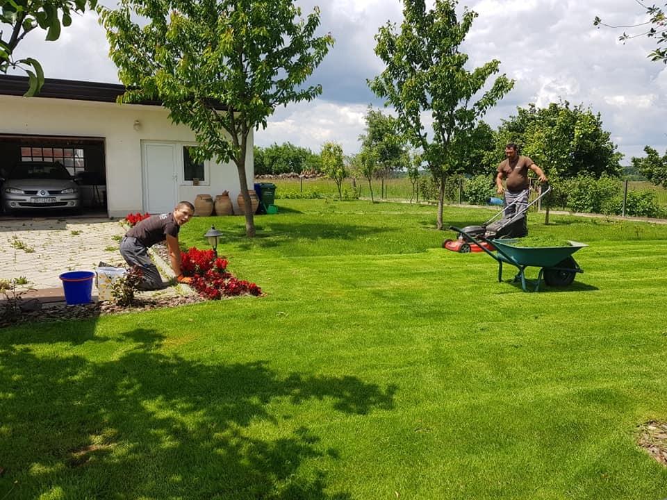 Dvorište, detalji i prekrasan travnjak
