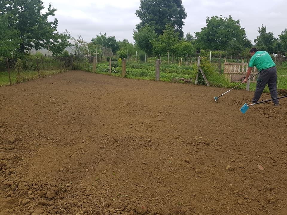 Novi travnjak u našoj organizaciji