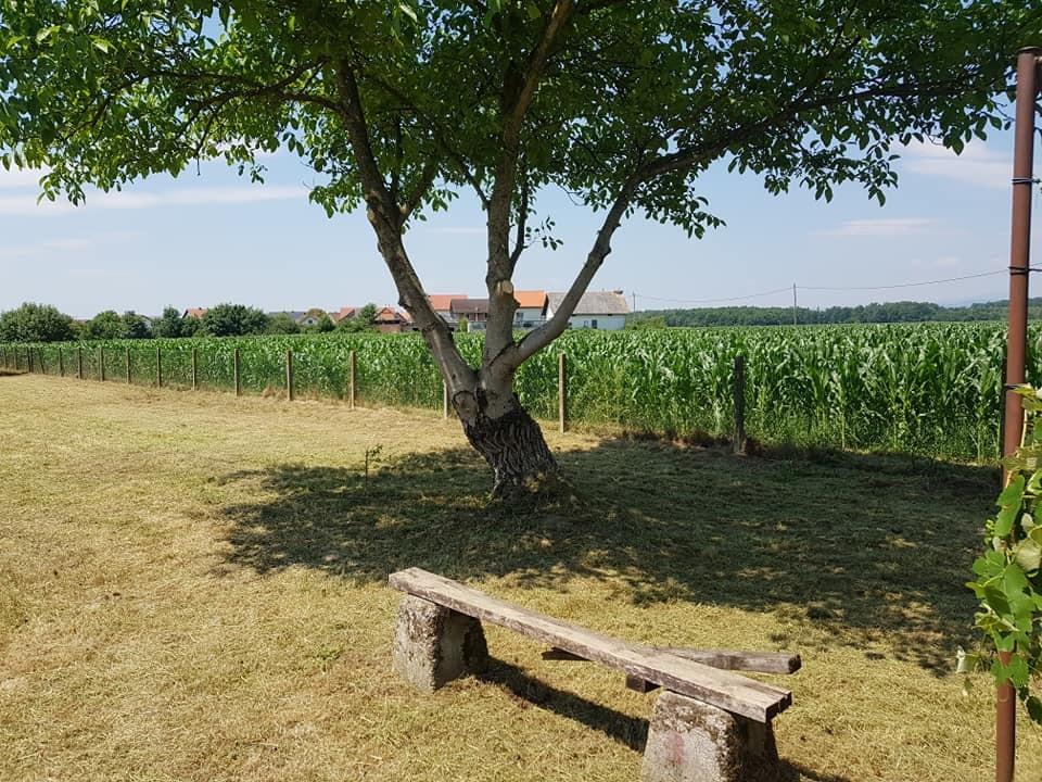 Čišćenje i uređenje parcele, košnja trave i sakupljanje otkosa