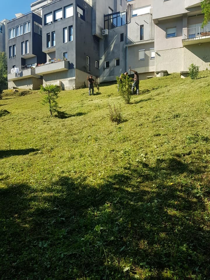Košnja, sakupljanje i odvoz pokošene trave