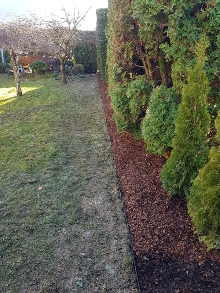 Uklanjanje suhih i bolesnih tuja, zamjenska sadnja, orezivanje stabala i grmova