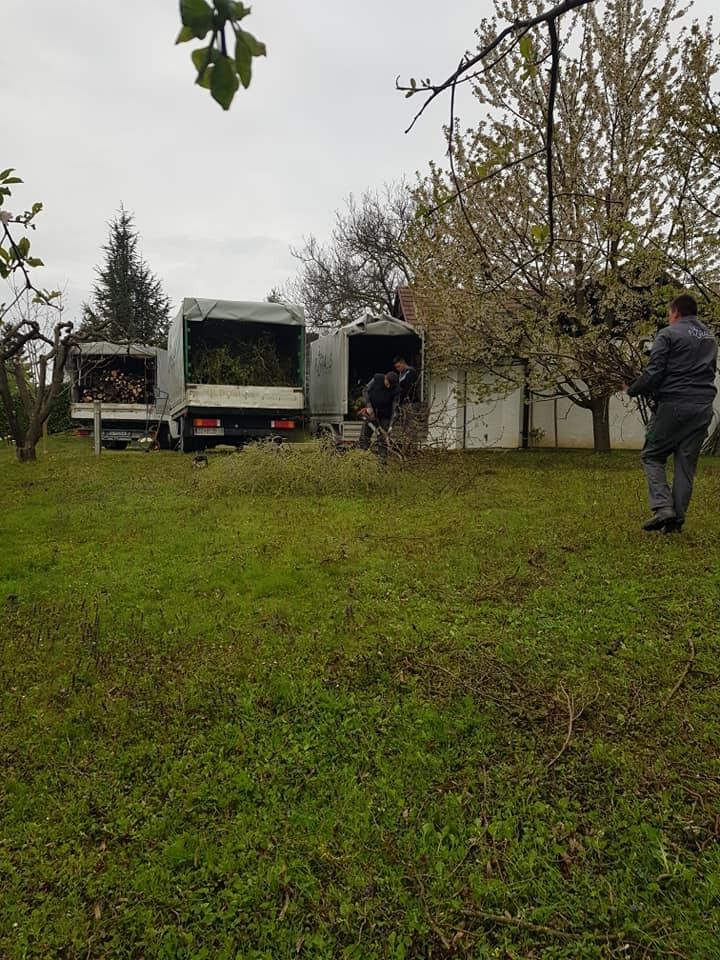 Čišćenje zapuštenih površina, malčiranje i krčenje