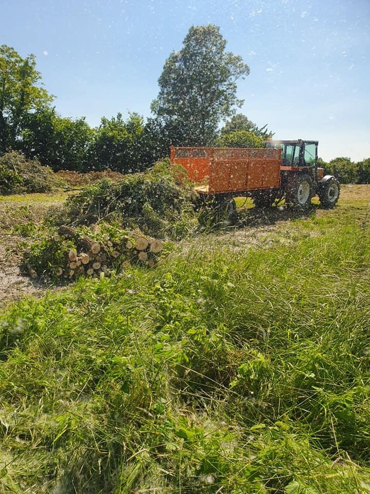 Čišćenja parcela i odvoz biootpada