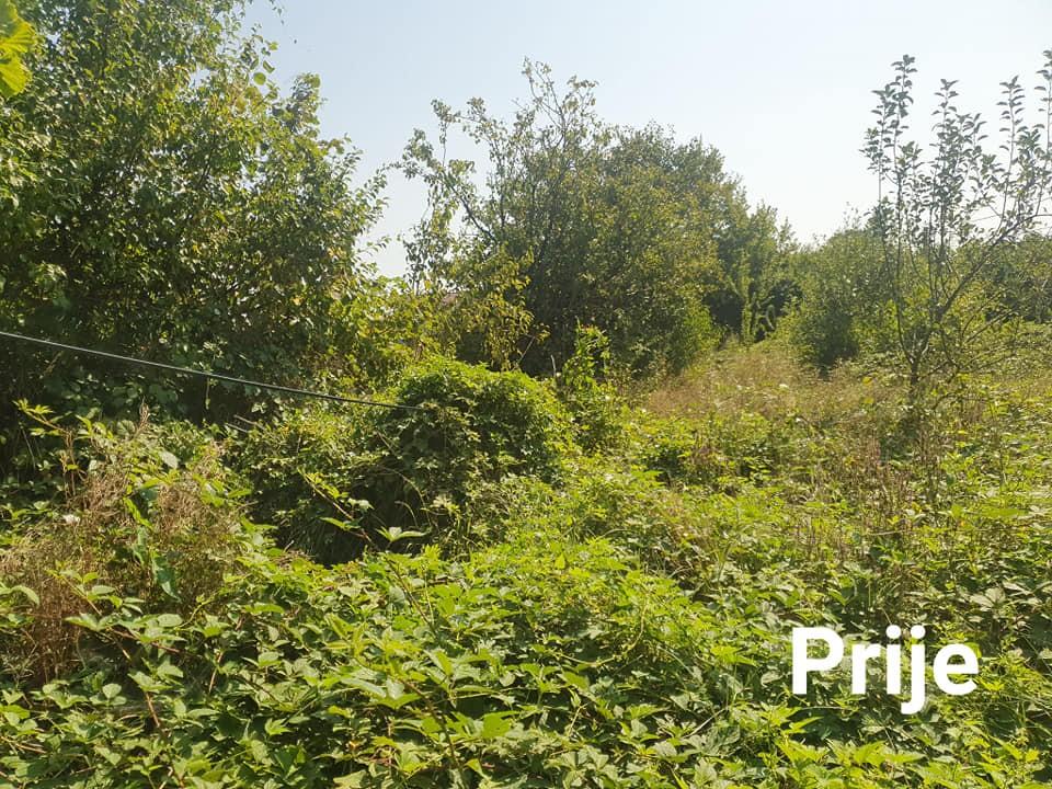 Malčiranje šumskim malčerom i uređenje zapuštene parcele
