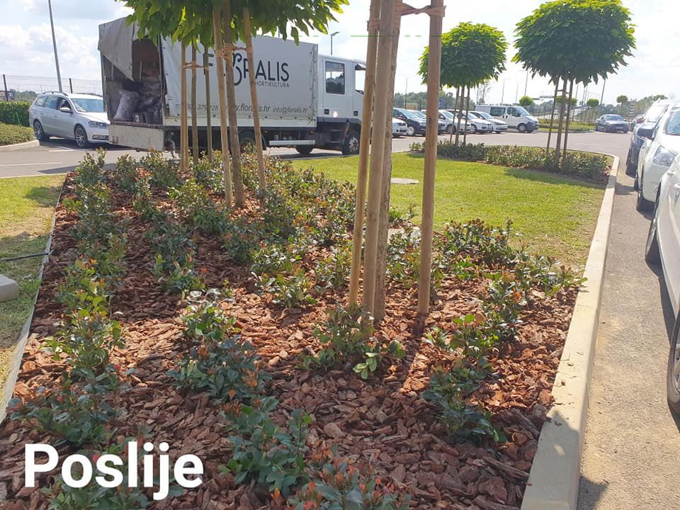 Hortikulturno uređenje gredica i zamjenska sadnja biljaka